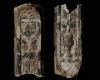 Fragment einer Eckkkachel mit Vasendekor, polychrom glasiert, erste Hälfte 17. Jh., Heidelberg, Kurpfälzisches Museum, urspr. Heidelberg, Kornmarkt