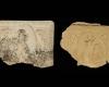 Fragment des Models einer Blattkachel mit Verkündigungsengel in einem Medaillon aus einer zweiteiligen Verkündigungsdarstellung unglasiert, 2. Hälfte 15. Jh., H. 15,4 cm, Br. 21,4 cm Hildburghausen, Satdtmuseum, urspr. Hildburghausen, Schlossplatz