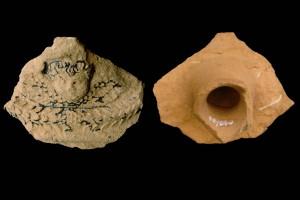 Fragment einer Gesimskachel mit geflügeltem Puttenkopf über lorbeerblattbesetztem Feston, dunkelbraun glasiert, zweite Hälfte 17. Jh., Bretten, Stadtmuseum