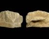 Fragment einer Eckkachel mit Karyatidenpfeiler über quasthaltender Maske, unglasiert, 17. Jh., H. 5,0 cm, Br. 6,7 cm, Frankfurt a. M., Historisches Museum