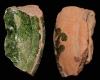Fragment einer Tellerkachel mit reliefierter Stirnseite, grün glasiert, 2. Hälfte 14. Jh., H. 8,7 cm, Br. 5,0 cm, Emmendingen, Hochburg